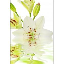 Stickers muraux déco : Fleur sur eau