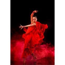 Stickers muraux déco : Danseuse flamenco