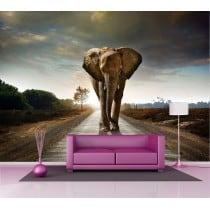 Sticker mural Eléphant 2,6 x3,6 m