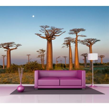 Sticker mural Baobab 2,6 x3,6 m