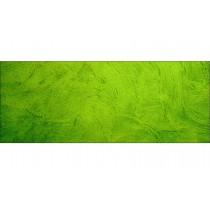 Brise-vue déco design vert