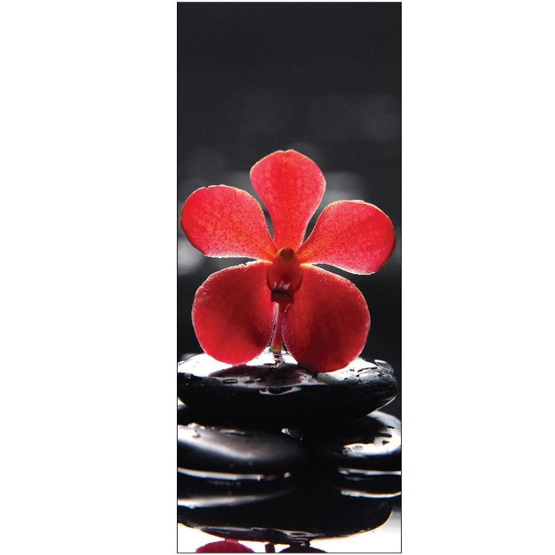 Stickers porte galets et orchid e rouge art d co stickers for Stickers pour cuisine rouge