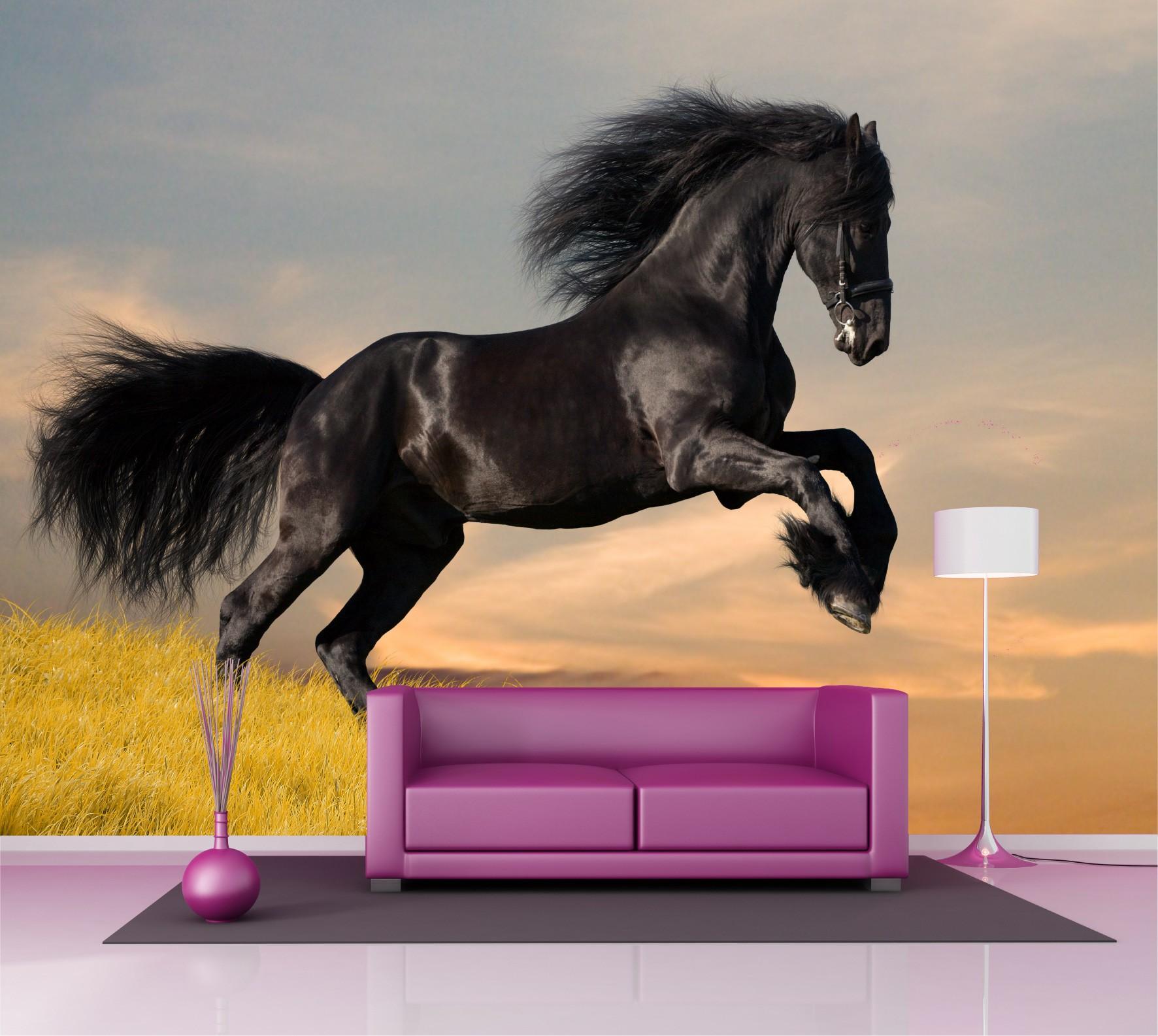 papier peint chevaux papier peint fond ducran de chevaux rasch uua with papier peint chevaux. Black Bedroom Furniture Sets. Home Design Ideas