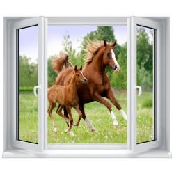 Stickers fenêtre déco : Cheval et son poulain