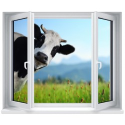 Stickers fenêtre déco : La vache