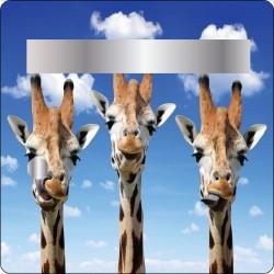 Stickers boites aux lettres Girafes 30x30cm