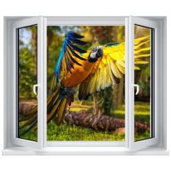 Stickers fenêtre Trompe l'oeil déco : Perroquet
