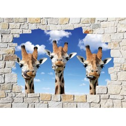 Stickers mural trompe l'oeil pierre déco Girafes