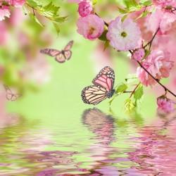 Stickers boite aux lettres Papillons Fleurs 30x30cm