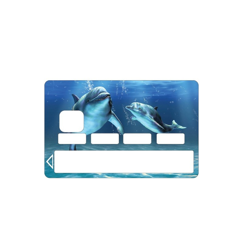 Stickers carte bleue carte bancaire cb art d co stickers - Autocollant carte bleue ...