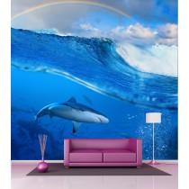 Papier peint grande largeur Requin 2,6x2,7 m