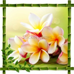 Sticker mural déco bambous Fleurs