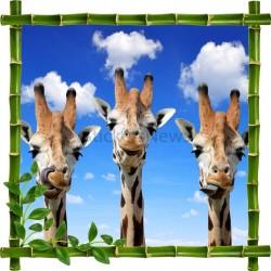 Sticker mural déco bambous Girafes