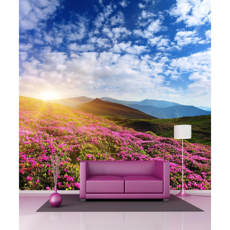 papier peint g ant montagne et champs de fleurs 250x250cm art d co stickers. Black Bedroom Furniture Sets. Home Design Ideas