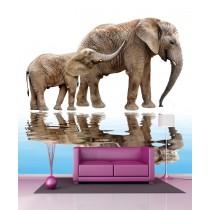 Stickers géant déco Elephants