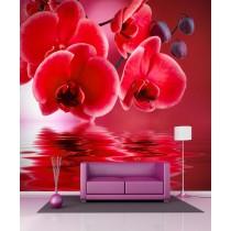 Stickers géant déco Orchidée rouge