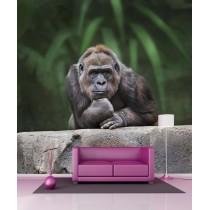 Stickers géant déco Gorille