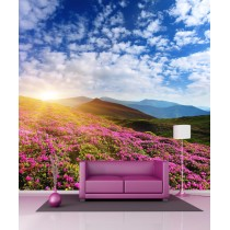 Stickers géant déco Paysage montagne et champs de fleurs