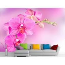 Stickers muraux géant déco : Orchidée