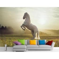 Stickers muraux géant déco : Cheval blanc