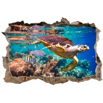 Stickers 3D Tortue réf 23731
