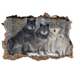 Stickers muraux 3D Loups 23840
