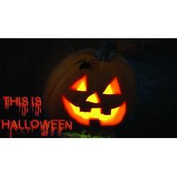 stickers citrouille halloween ref NL19-08