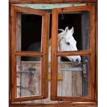 Sticker Fenêtre trompe l'oeil cheval