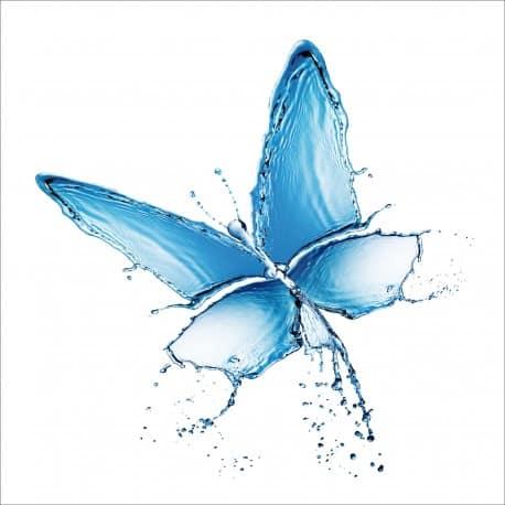 Sticker lave vaisselle Papillon ou magnet lave vaisselle