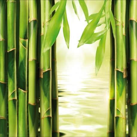 Sticker lave vaisselle Bambous ou magnet lave vaisselle