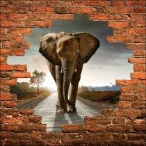 Sticker mural trompe l'oeil Eléphant