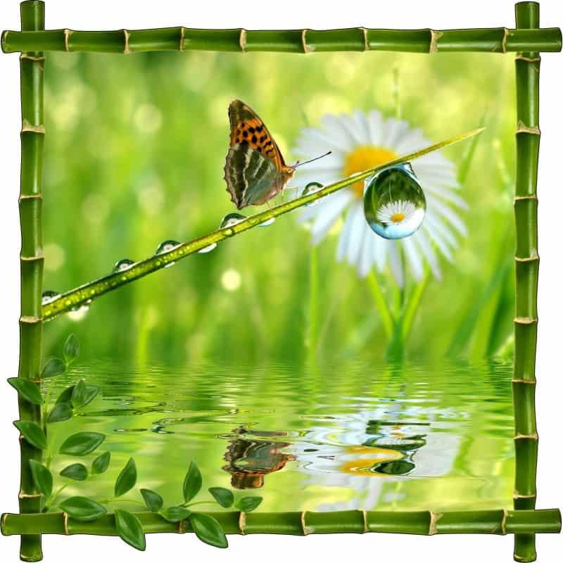 sticker mural trompe l 39 oeil d co papillon art d co stickers. Black Bedroom Furniture Sets. Home Design Ideas