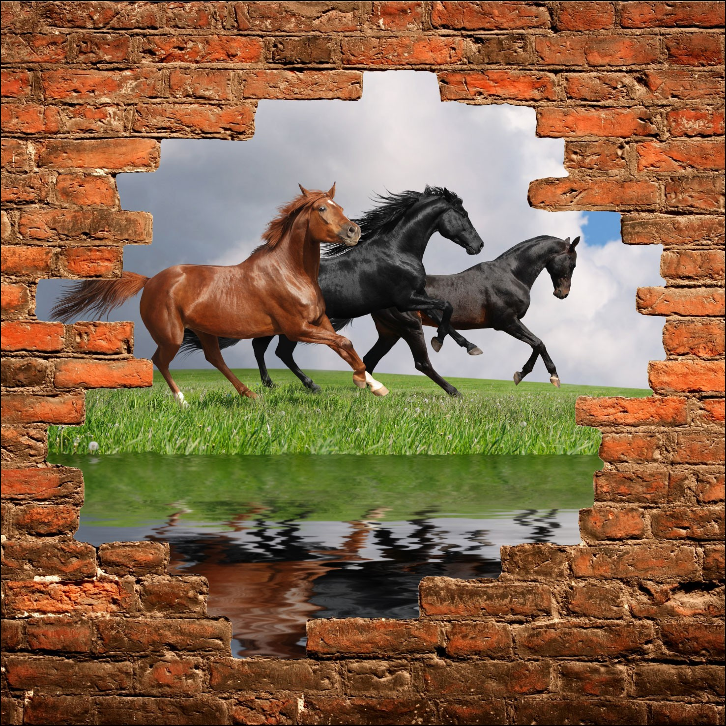Sticker mural trompe l\'oeil Chevaux - Art Déco Stickers