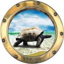 Sticker hublot trompe l'oeil Tortue