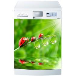 Sticker lave vaisselle ou magnet lave vaisselle Coccinelles