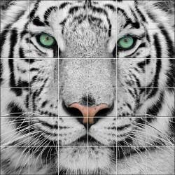 Stickers carrelage mural déco Tigre