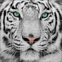 Sticker carrelage mural déco Tigre