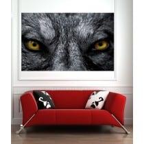 Affiche poster Yeux de loup