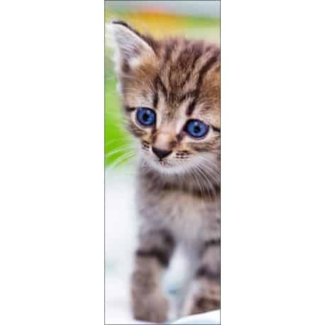 Affiche poster pour porte trompe l 39 oeil chat art d co stickers - Poster trompe l oeil pour porte ...