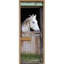 Affiche poster de porte trompe l'oeil Cheval dans son box