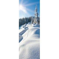 Affiche poster format porte trompe l'oeil Montagne neige