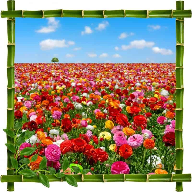 Stickers muraux trompe l 39 oeil fleurs stickers d co pas cher - Deco trompe l oeil mural ...