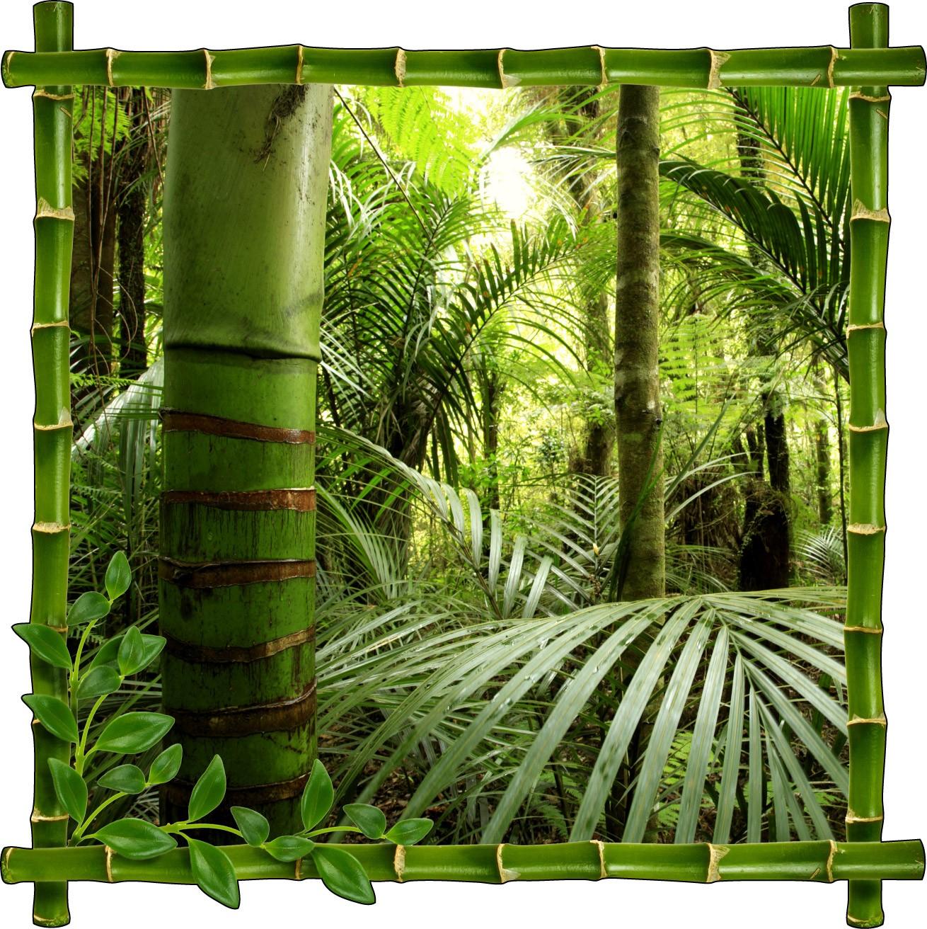 Stickers Trompe L Oeil 3d Bambous Art D Co Stickers