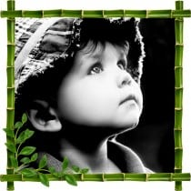 Sticker mural trompe l'oeil déco bambous Enfant