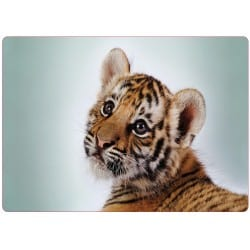 Sticker pc ordinateur portable bebe tigre