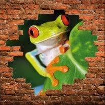 Sticker mural trompe l'oeil mur de pierre grenouille