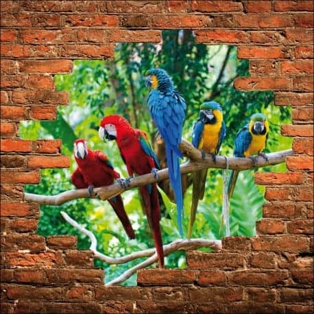 Sticker mural trompe l'oeil perroquets