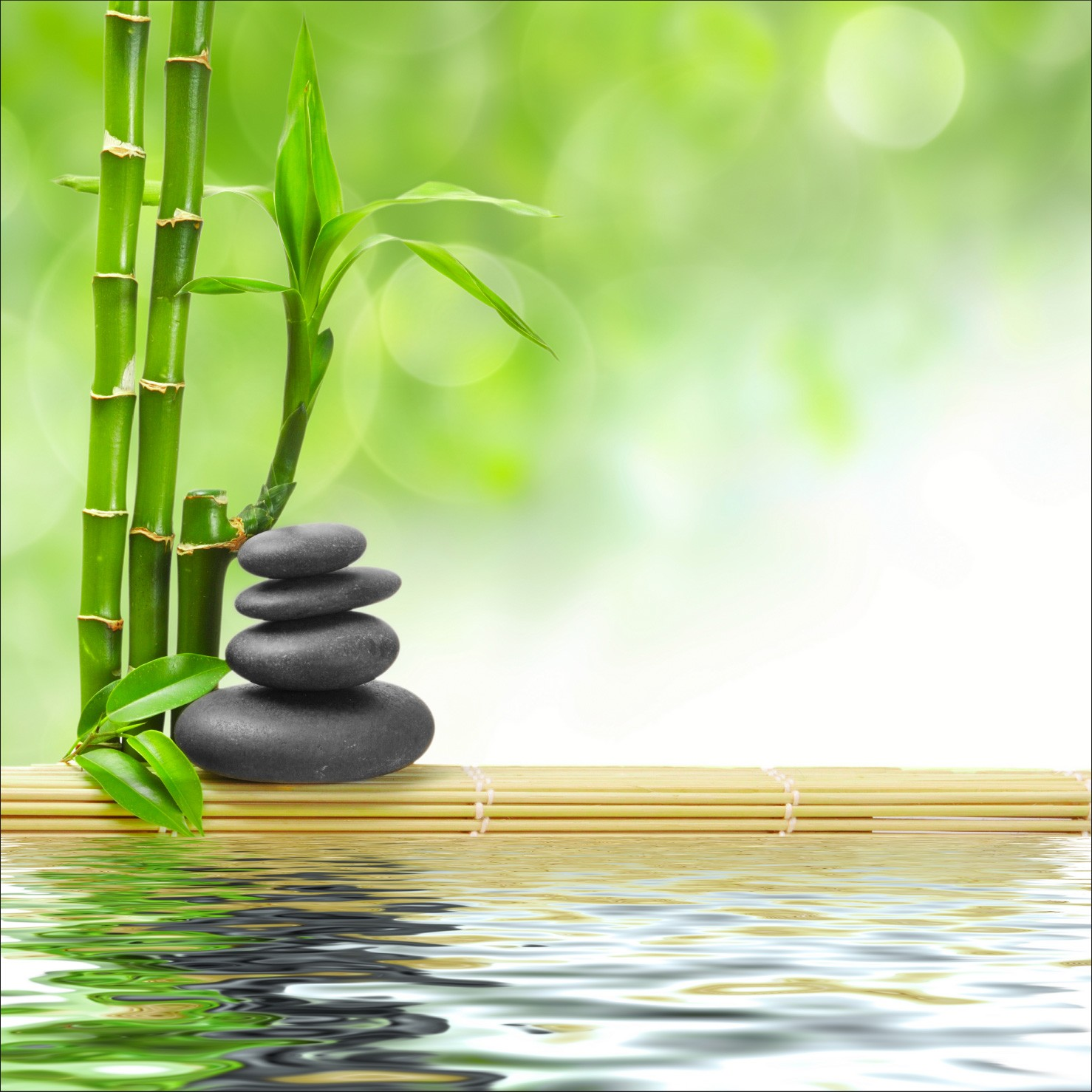 Stickers Muraux Nature Zen Best Additional Product Information With