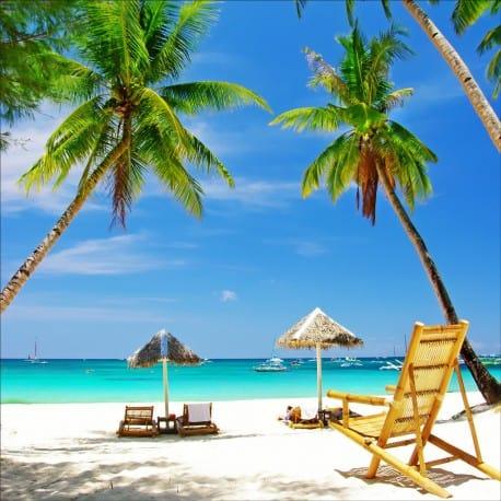 """Résultat de recherche d'images pour """"plage palmiers"""""""