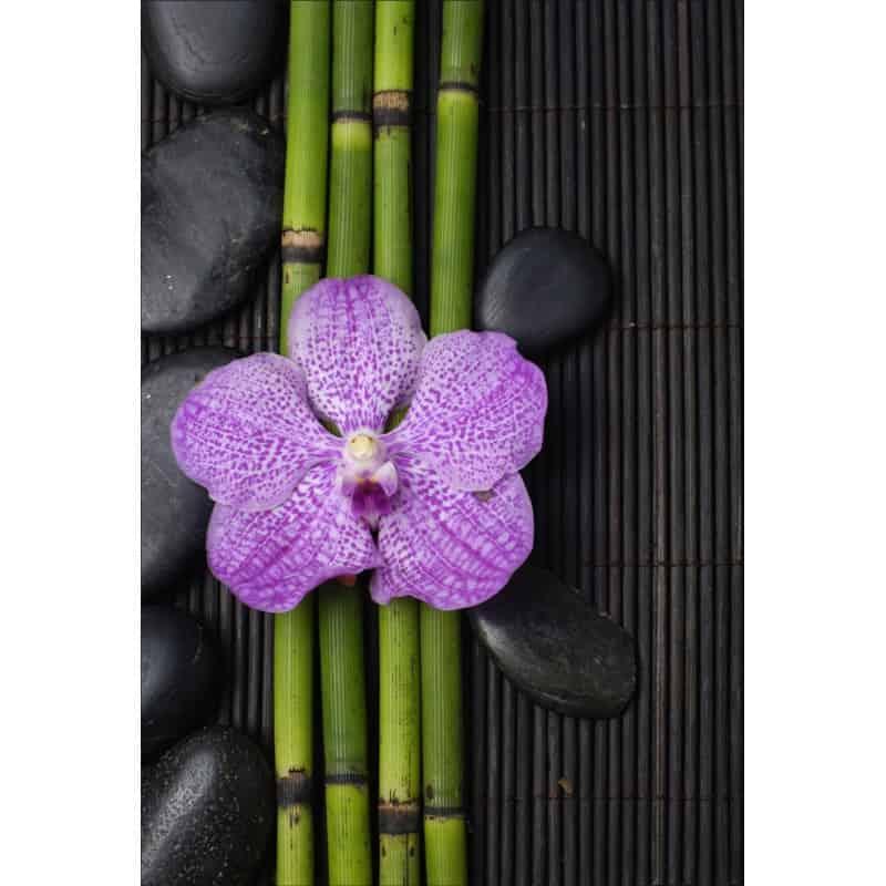 stickers muraux d co bambou orchid e art d co stickers. Black Bedroom Furniture Sets. Home Design Ideas